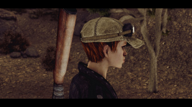v 1.0 with ENB