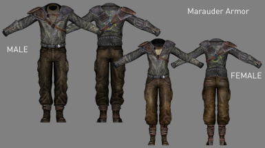 Tammer's NIF-Bashed Armor and Clothing Pack