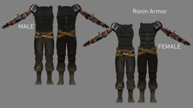 Ronin Armor (Added in v3.4)