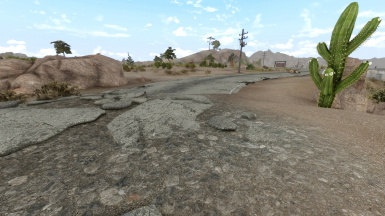 Natural Landscapes (Mojave Edition)