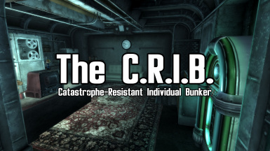 The C.R.I.B. (Catastrophe-Resistant Individual Bunker)