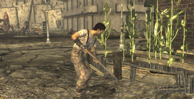 local squatter tends to the crops