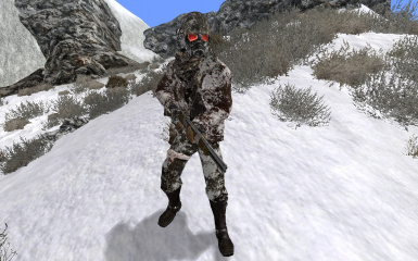 Winterized Textures Optional File