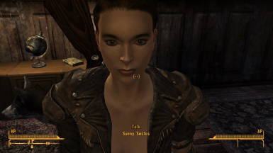 Sunny Smiles on top of Viva New Vegas and this mod, as well as Type 4 and its patch