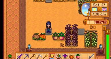DYWYC Pumpkins and Melons