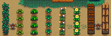 Chinese-Forage to farm