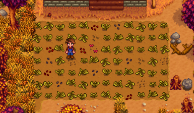 How your farm looks without proper care