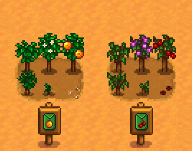 Lumisteria Small Fruits Tree For Json Assets At Stardew Valley Nexus Mods And Community