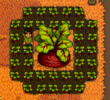 6480's Giant Crops