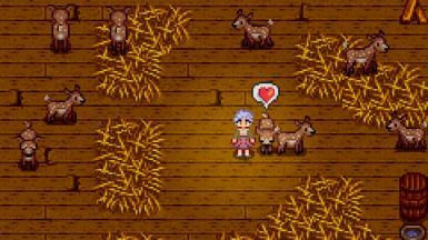 Fawn and deer in the Deluxe Barn