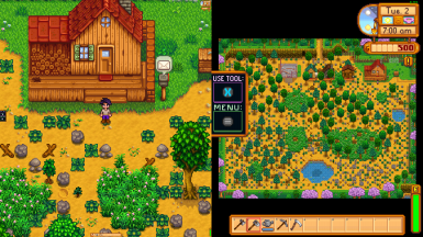 Local co-op zoom and UI