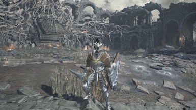 BDO Goyen armor set and weapons with or without cape