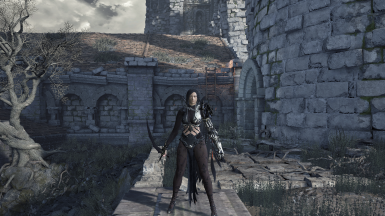 BDO -Dark Knight- Rosa Cassius outfit with weapons with or without cloak