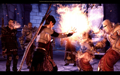 Morrigan vs Templars