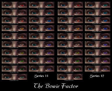 The Bowie Factor 11-12