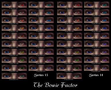 The Bowie Factor 13-14