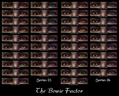 The Bowie Factor 05-06