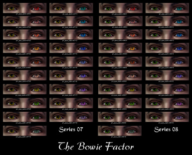 The Bowie Factor 07-08