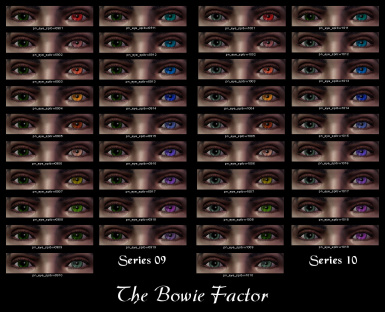 The Bowie Factor 09-10