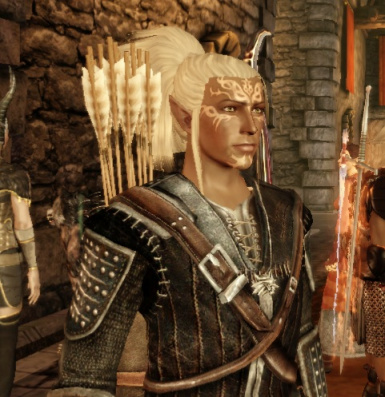 Male Elf Preset in Witcher Armor