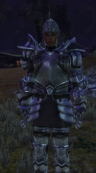 Grey Warden Armor