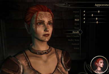 Female Dalish Elf Save plus Chargen Files at Dragon Age - mods and