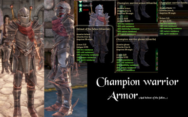 champion warrior armor