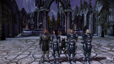 Alistair and his Grey Warden recruits - Allaria