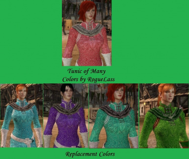 Tunic of Many Colors