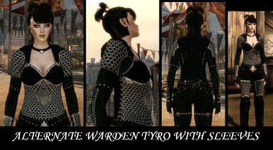 Alternate Warden Tyro with sleeves