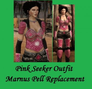 Pink Seeker Outfit