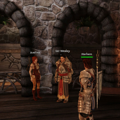 Aveline and Ser Wesley at the Lothering Chantry - tooltip names