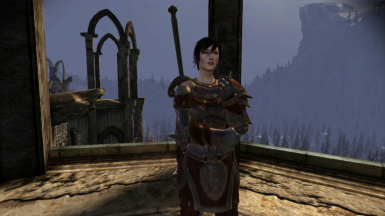 Hawke with greatsword, no blood smear