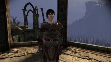 Hawke with sword and shield, no blood smear