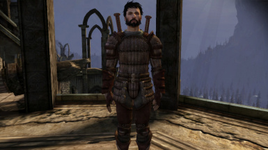 Male Hawke with daggers, no blood smear