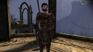 Male Hawke with greatsword, no blood smear