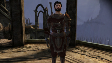 Male Hawke with sword and shield, no blood smear