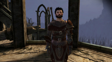 Male Hawke with sword and shield, with blood smear