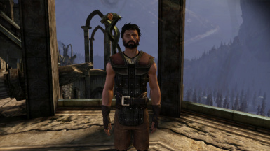 Male Hawke with tanned skin tone 2