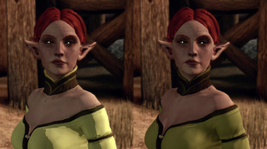 Elves of Ferelden HD