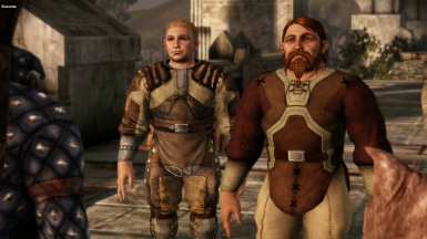 The Dwarves of Thedas