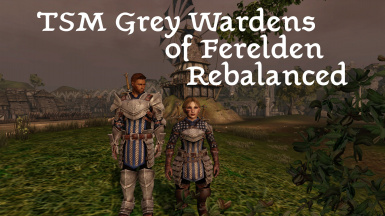 TSM Grey Wardens of Ferelden Rebalanced