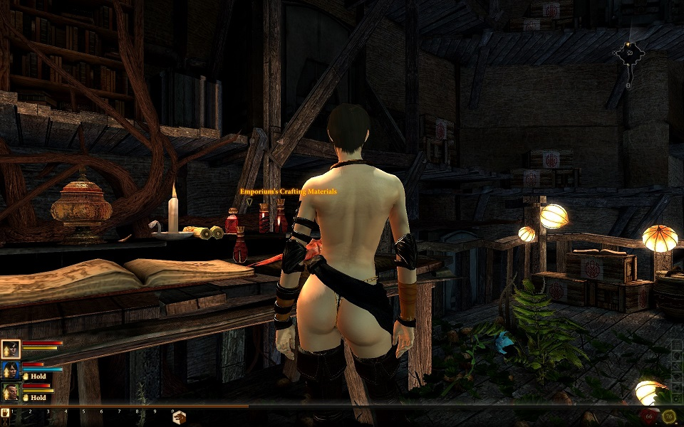 The Guild 2 - Renaissance : Patches, Updates, Addons