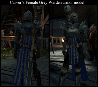 Heavy Female Warden Armor
