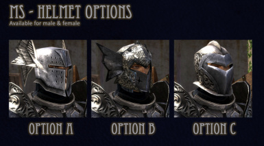 MS helmet options