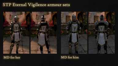 Eternal Vigilance Armour Pack