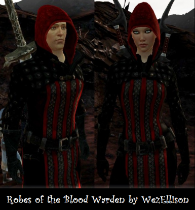 Robes of the Blood Warden
