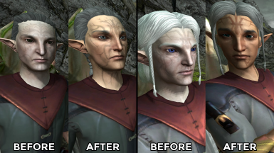 Elves with Human Skin REDUX at Dragon Age 2 Nexus - mods and community