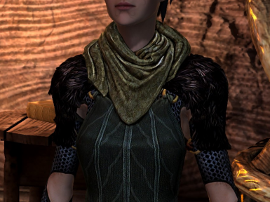 Merrill's Inquisition Armour Texture