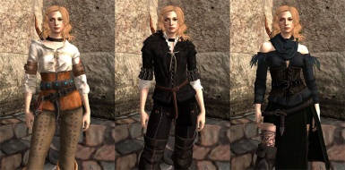 Witcher 3 - Ciri and Yennefer Outfits for FemHawke (Plus Shani)
